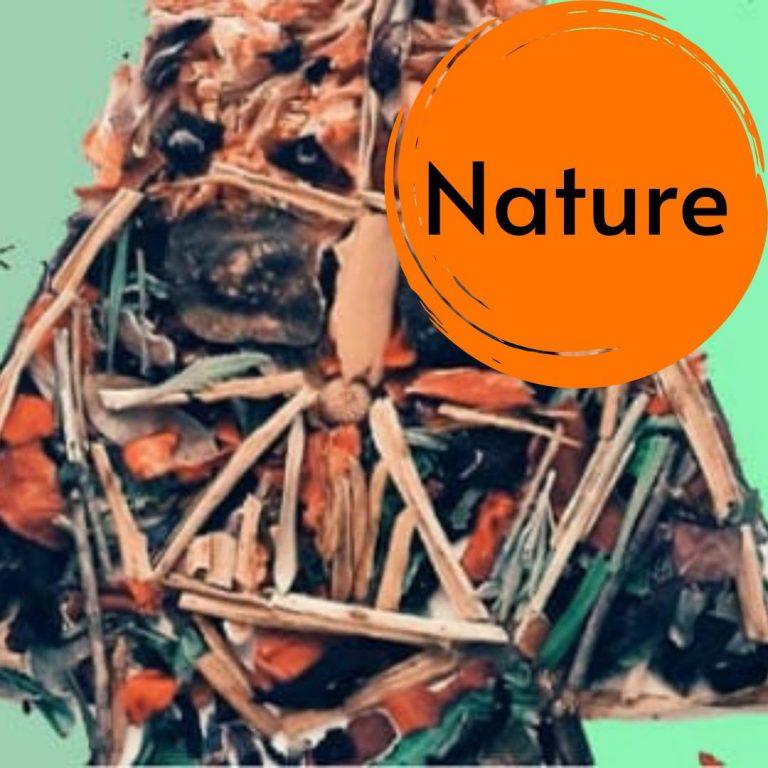 Doğa Atölyesi